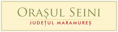 Orașul Seini, județul Maramureș