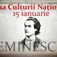Ziua Culturii la Seini, 2018