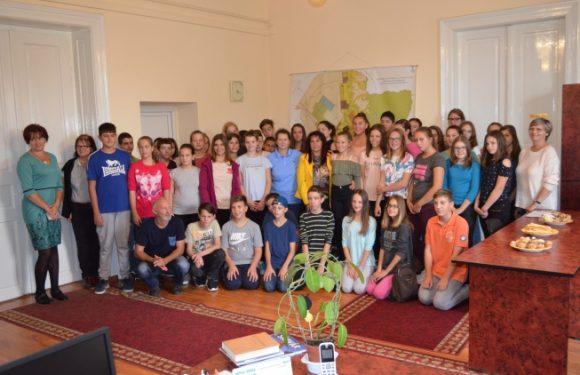 Vizita delegatiei din Sarvar-Ungaria in orasul Seini